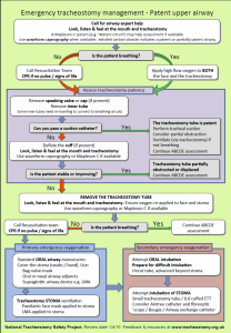 Patent Airway Algorithm